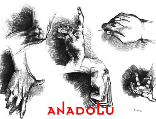 Diyarbakırdaki Kuru Kalem Hayvan Çizim Kitabı