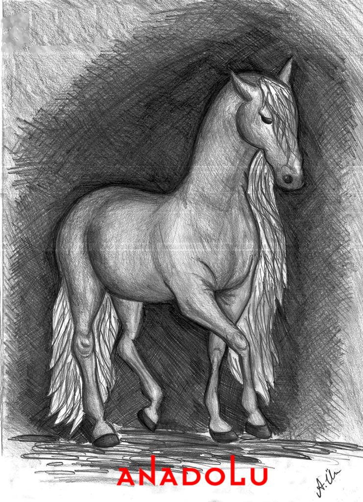 Diyarbakır kara kalem at çalışması